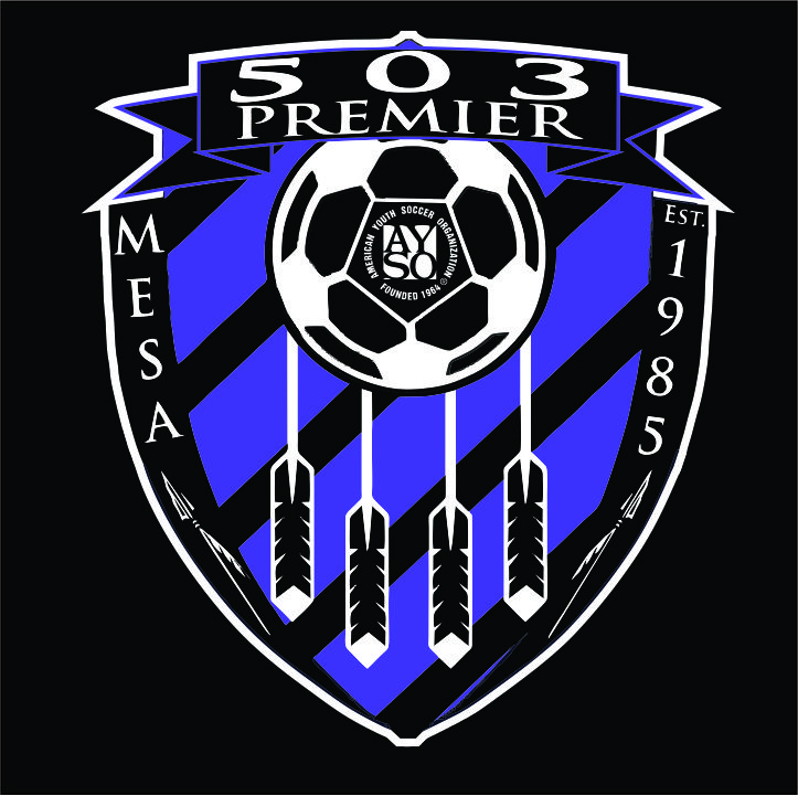 AYSO Region 503 - 50/50 T-shirt